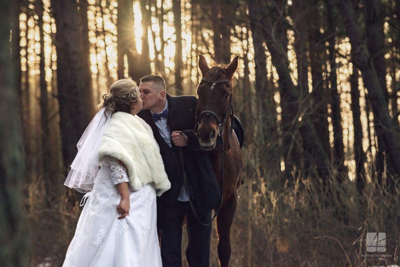 Linos ir Sergėjaus vestuvės